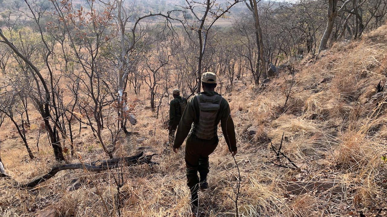 Akashinga Female Rangers in Zimbabwe With Holly Budge
